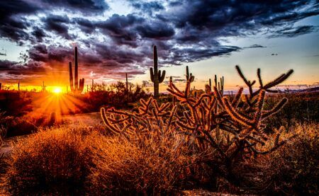 Top 10 Real Estate Agents in Arizona for 2021
